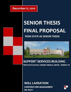 Information Technology dissertation support services