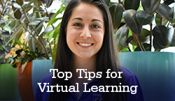 top tipes for virtual learning