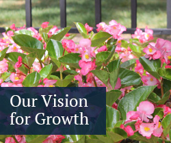 our vision for growth