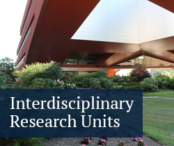 interdisciplinary research units
