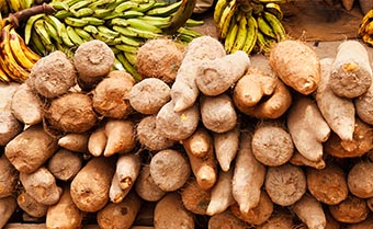 pile of yams with bananas in the background