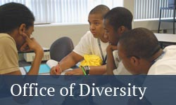 Office of Engineering Diversity